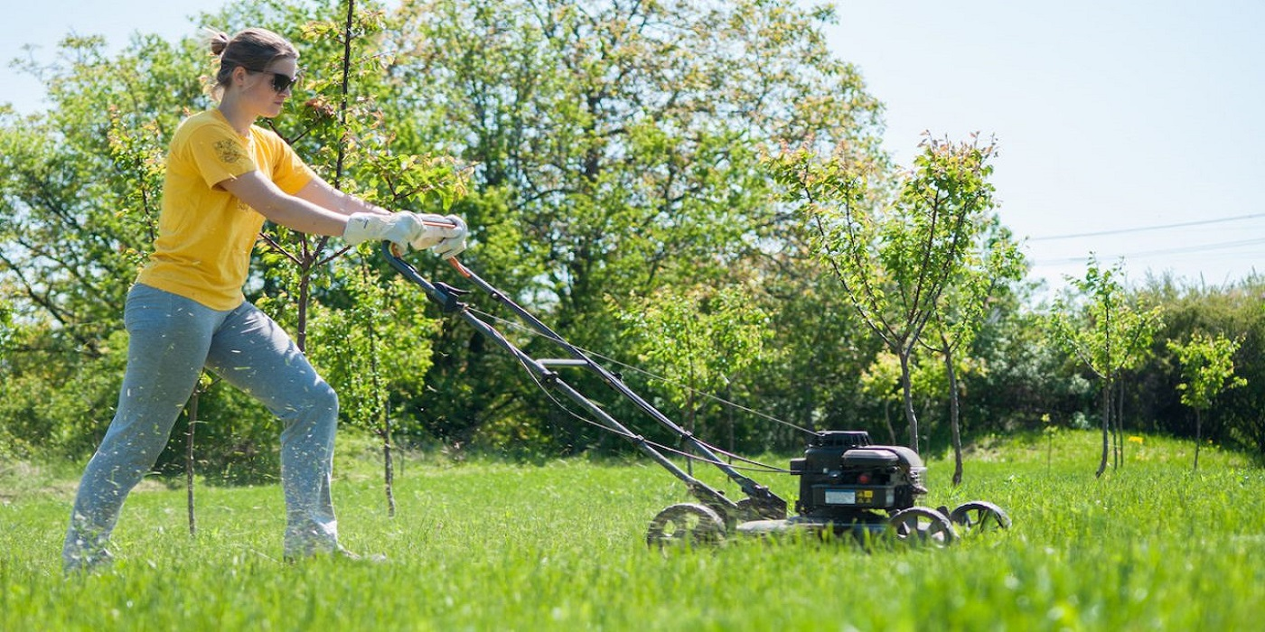 Best Self Propelled Lawn Mower – Best Selling And Top Rated Mower